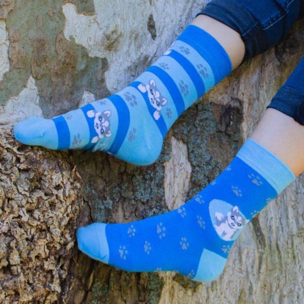 Veselé ponožky POHODKY Pes Husky