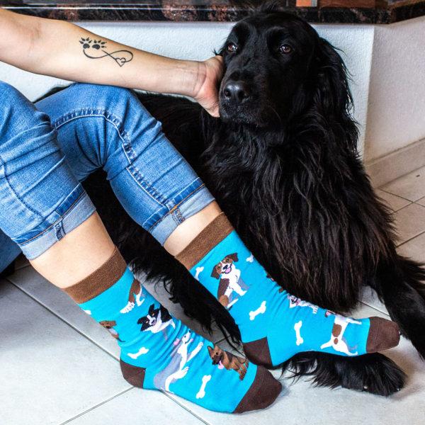 Veselé ponožky POHODKY Psy