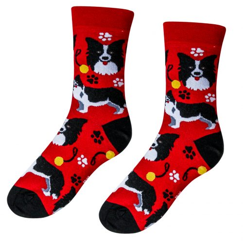Veselé ponožky Pes Border kólia